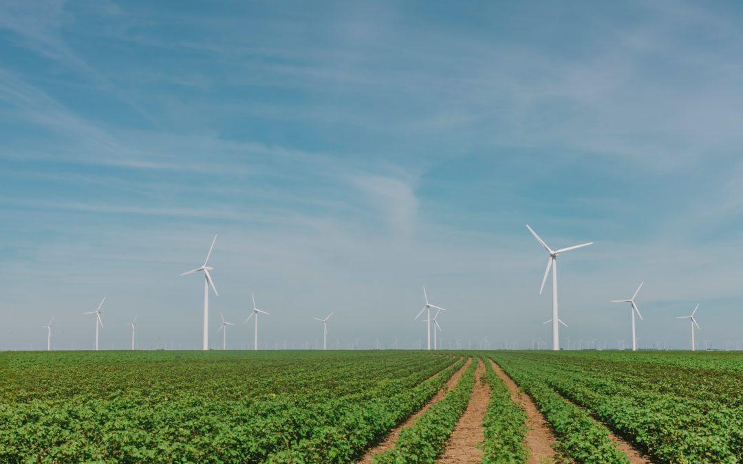 Adaptando las ventajas de los distritos térmicos a las energías renovables